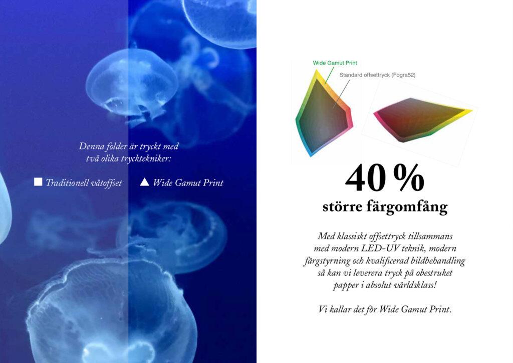 Wide Gamut Print - Större färgomfång